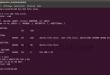 Serveur DNS sur Linux