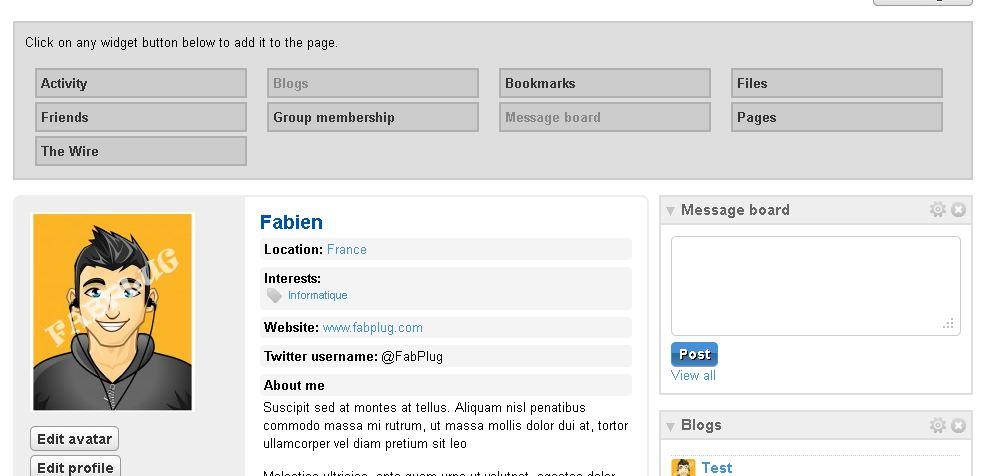 Profil réseau social Elgg