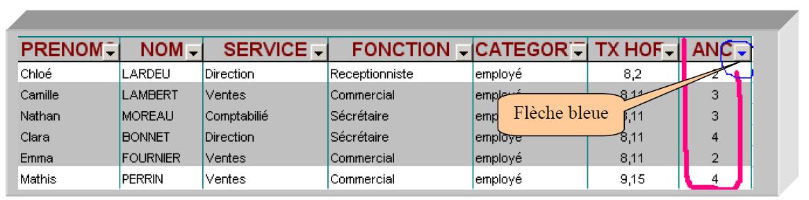 Application filtre colonne Excel