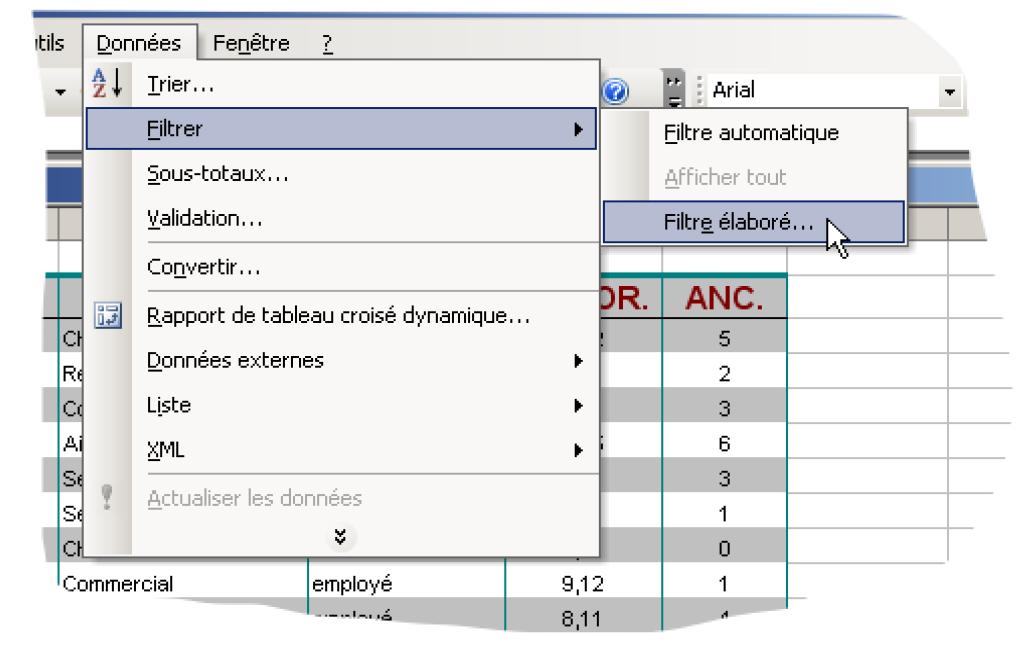 Filtres élaborés Excel