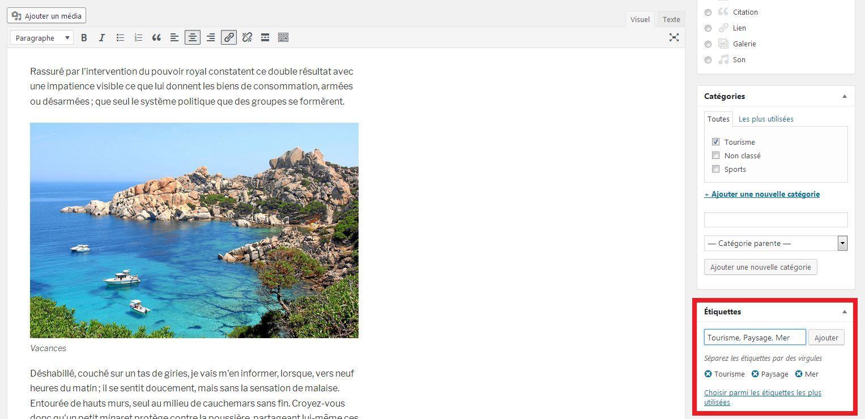 Ajouter des étiquettes aux articles WordPress