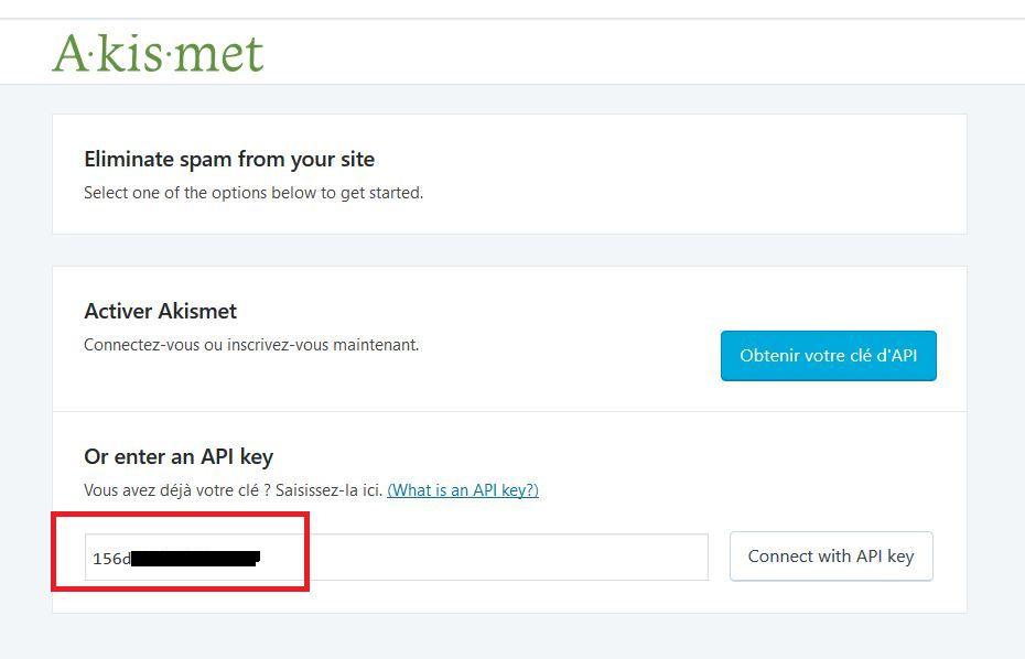 Copier une clé API