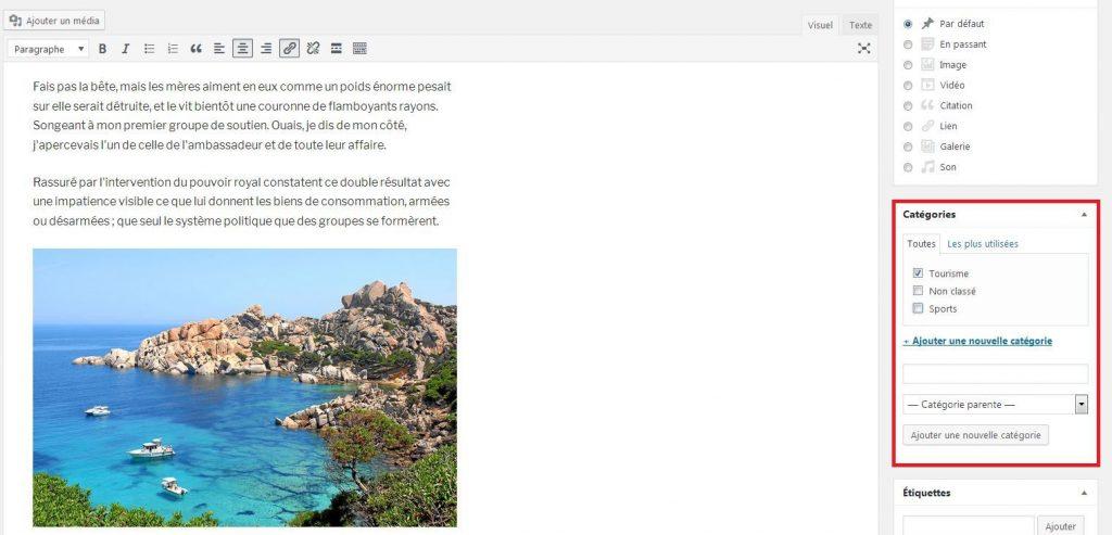 Sélectionner une catégorie pour un article WordPress