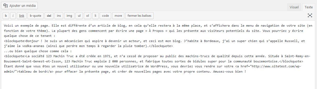 Texte HTML dans une page WordPress
