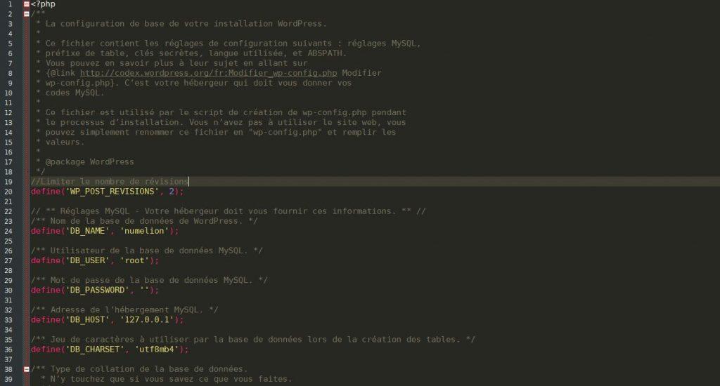 Fichier configuration pour limiter le nombre de révisions WordPress