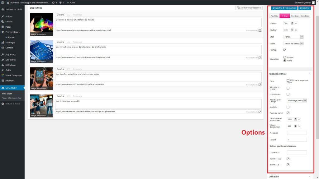 Les options de MetaSlider pour insérer un slider dans WordPress