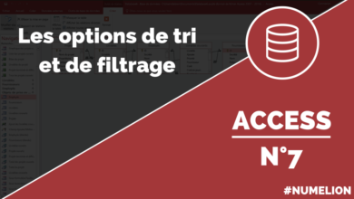 Options de tri et filtrage dans Access