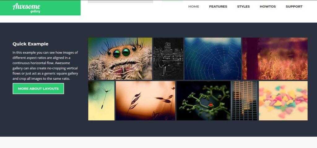 Awesome Galley pour créer des magnifiques galeries images dans WordPress