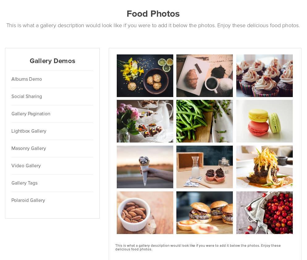 Envira Gallery un des meilleurs plugins de galerie images de WordPress