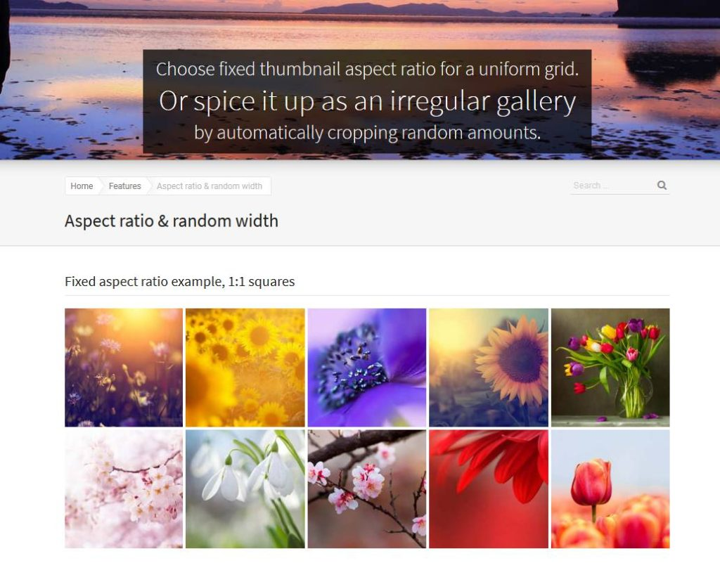 Justified image grid parmi les meilleurs plugin de galleries d'images