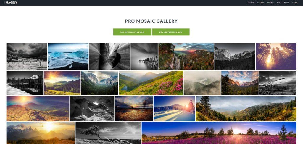 NextGEN Gallery plugin gratuit pour créer des galeries images WordPress
