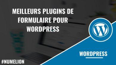 Meilleurs plugins de formulaire pour WordPress