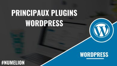 Principaux plugins WordPress