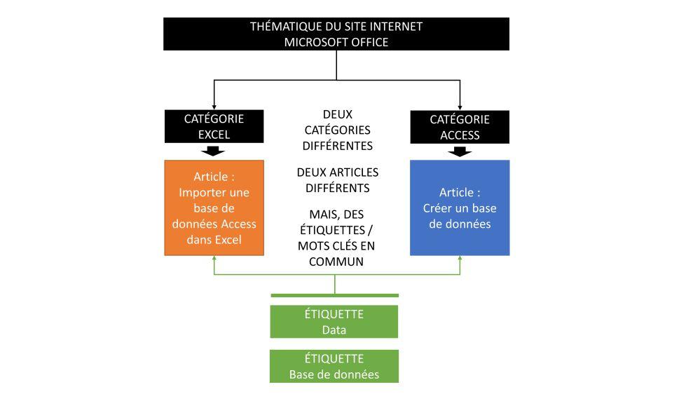 Les étiquettes et catégories dans WordPress